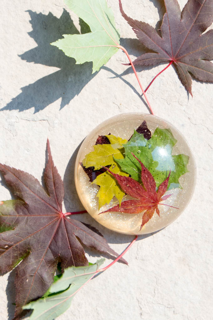 Make a gorgeous paperweight with late summer maple leaves and resin! A thoughtful gift idea for a co-worker, boss or teacher. Step-by-step tutorial for this nature-inspired DIY office decor idea included!