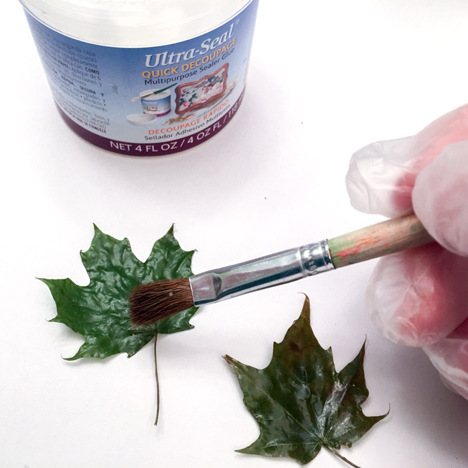 Coating leaves for DIY resin paperweights