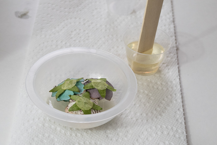 Layering Resin to make paperweight- glue flowers down to resin