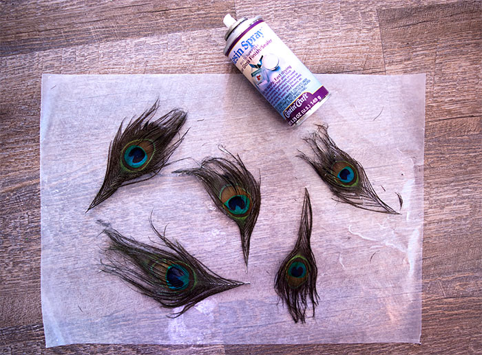 Prepare the feathers with Resin Spray before Casting them inside the Resin