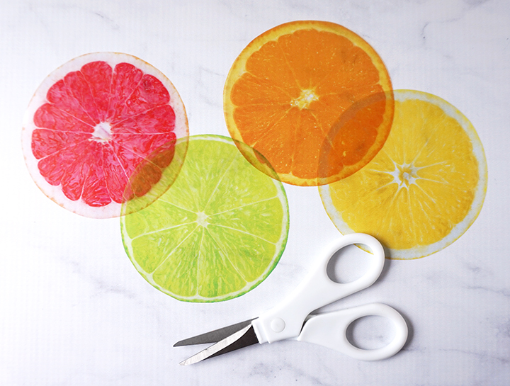Printed Citrus Slice Images with Scissors