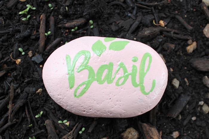 Basil garden marker with envirotex spray finish