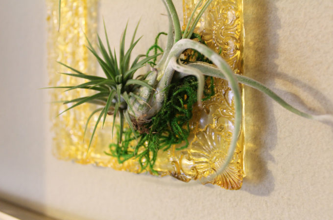 diy resin frame | replicate picture frame with resin | make picture frame mold | framed air plants