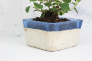 DIY Concrete and Resin Planter
