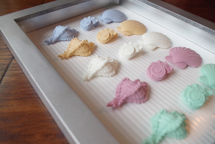 Resin Seashell Wall Art - lined background with scrapbook paper in shadowbox frame