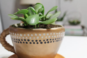 diy coffee mug planter | diy planter | easy sculpt planter | easysculpt planter | diy coffee mug | easysculpt coffee mug | easy sculpt coffee mug