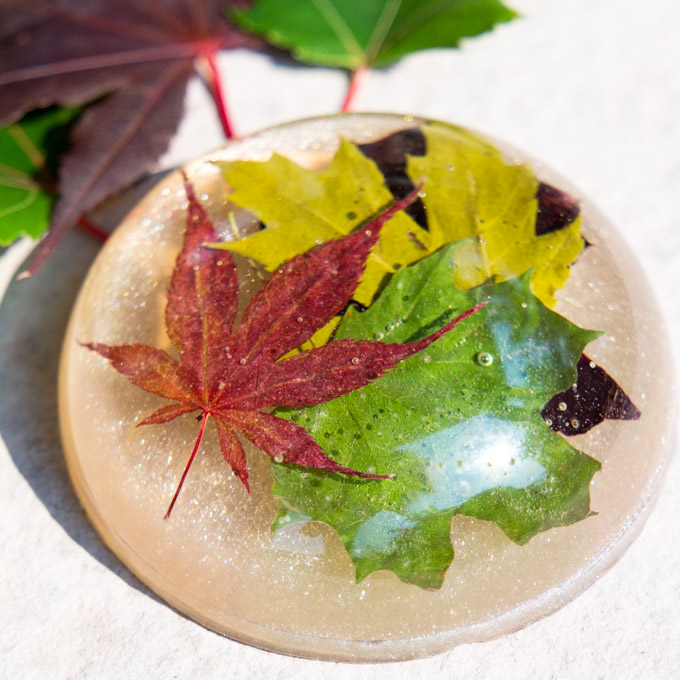 DIY Paper Weight Made With Resin And Maple Leaves Great Gift Idea For Your Boss