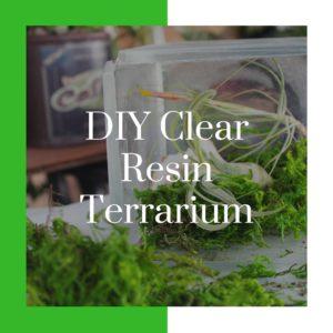DIY Clear Resin Terrarium