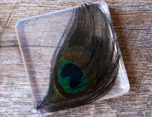 DIY Resin Peacock Feather Coasters