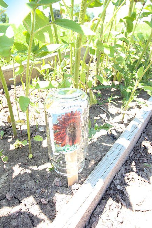 Resin Crafts Blog   DIY Garden Ideas   Garden Hacks   Summer Hacks   Outdoor Ideas   DIY Outdoor  