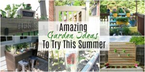Amazing Garden Ideas To Try This Summer