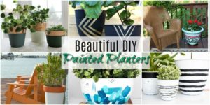 Beautiful DIY Painted Planters