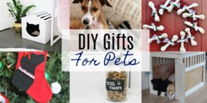 DIY Pet Gifts