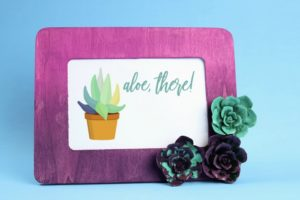 Resin Succulent Embellished Frame