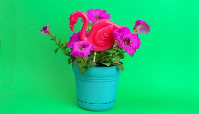 Resin Plant Flamingos