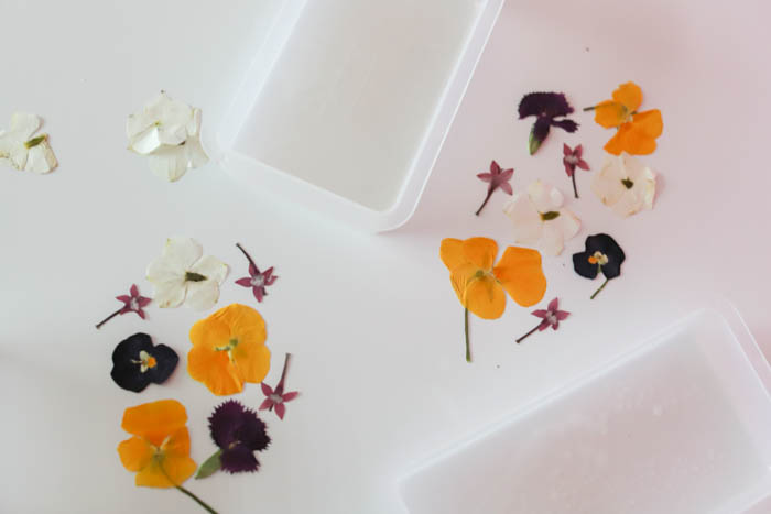How To Preserve Pressed Flowers In Resin - Flowers Healthy